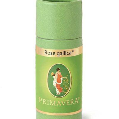 Rose gallika bio Ätherisches Öl von Primavera