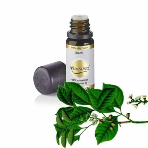 """Elemi. Gibt Ausgeglichenheit und verleiht Stärke.Elemiöl erinnert im Duft an Olibanumöl (Weihrauch). Es ist bekannt als ein """"lichtbringender"""" Duft - gemischt mit Sandelhoz und Bergamotte ein fantastischer Duft."""