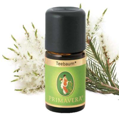 Teebaum bio Ätherisches Öl von Primavera