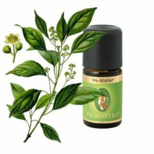 Ho-Blätter Ätherisches Öl von Primavera