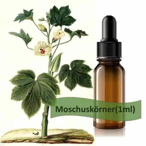 Moschuskörner Ätherisches Öl