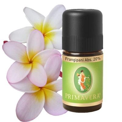 Frangipani Absolue Ätherisches Öl 20% von Primavera